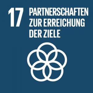 Partnerschaften zur Erreichung der Ziele